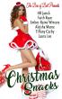 ca4a8-christmas2bsnacks2bebook2bcover