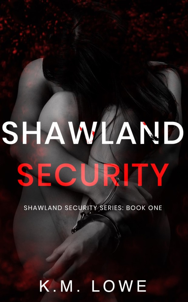 shawland security thumbnail_SSBook1ebook